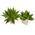"17"" Agave Succulent Plant (Set of 2)"