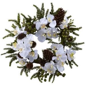 """22"""" Phalaenopsis & Pine Wreath"""