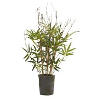"27"" Bamboo Tree w/Cement Pot"