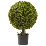 "27"" Boxwood Ball Topiary"