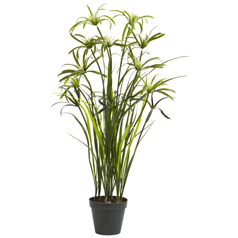 3 39 papyrus silk plant silk specialties. Black Bedroom Furniture Sets. Home Design Ideas
