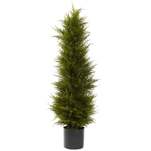 3.5 ft Cedar Tree