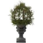 """30"""" Pond Cypress Topiary w/Urn (Indoor/Outdoor)"""
