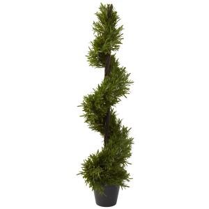 """39"""" Rosemary Spiral Tree (Indoor/Outdoor)"""