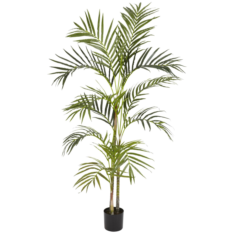 4 areca palm silk tree silk specialties