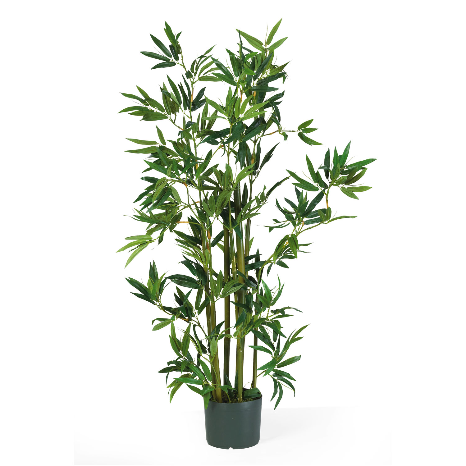4\' Bamboo Silk Tree - Silk Specialties
