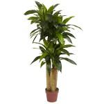 4' Corn Stalk Dracaena (Real Touch) Silk Plant
