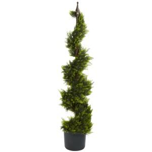 4' Cypress Spiral Silk Tree