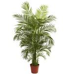4.5' Areca Palm UV Resistant (Indoor/Outdoor)