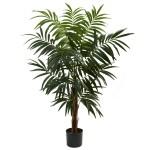 4.5' Bulb Areca Tree