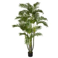 5' Biggy Style Areca Silk Tree