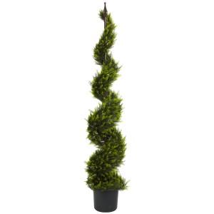 5' Cypress Spiral Silk Tree