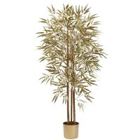 5' Golden Bamboo Tree