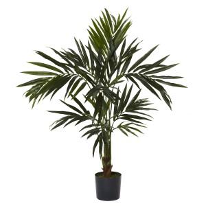 5' Kentia Silk Tree