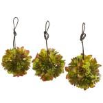 "5"" Mixed Succulent Hanging Ball (Set of 3)"