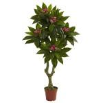 5' Plumeria Tree UV Resistant (Indoor/Outdoor)