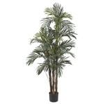 5' Robellini Palm Silk Tree