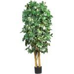 5' Schefflera Silk Tree