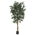 5' Smilax Silk Tree