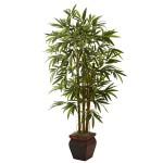 5.5' Bamboo w/Decorative Planter