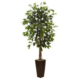 5.5' Ficus Tree w/Bamboo Planter