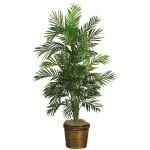 """56"""" Areca Palm Silk Tree w/Basket"""