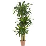 "57"" Corn Stalk Dracaena Silk Plant (Real Touch)"