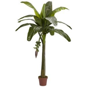 6' Banana Silk Tree (Real Touch)