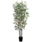6' Mini Bamboo Tree