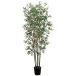 6' Mini Bamboo Tree
