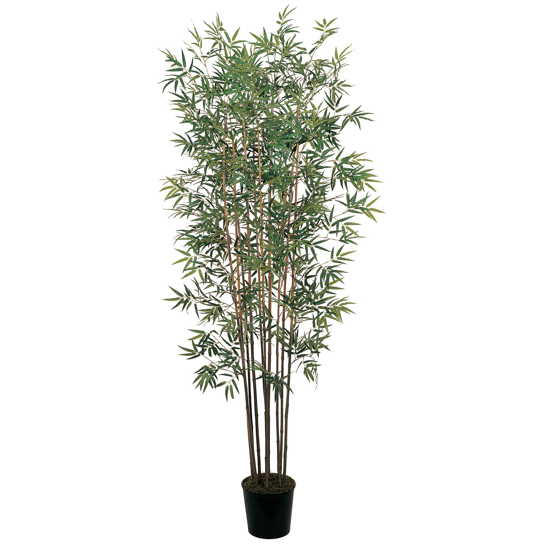 6 Mini Bamboo Tree Silk Specialties