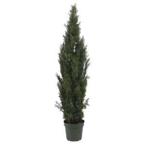 6' Mini Cedar Pine Tree (In-door/Out-door)