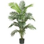 6' Paradise Palm Silk Tree