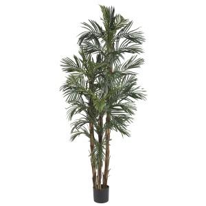 6' Robellini Palm Silk Tree