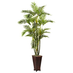 6.5' Areca w/Decorative Planter