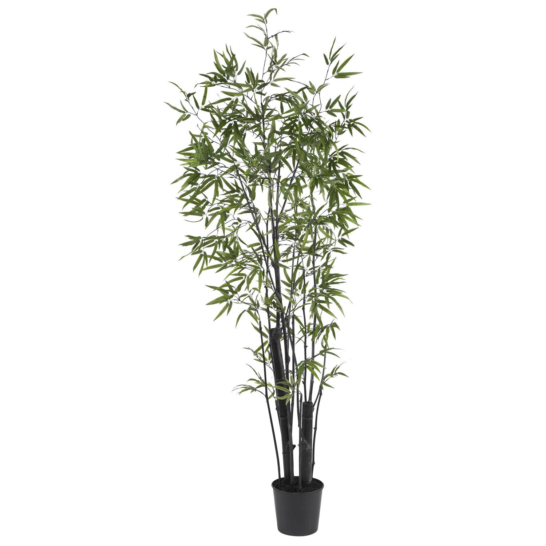 6 5 Black Bamboo Tree 2 Thick Trunks Silk Specialties