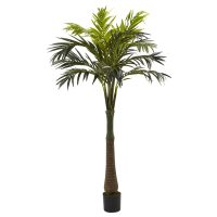 6.5' Coconut Palm Silk Tree