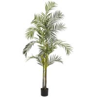 7' Areca Palm Silk Tree