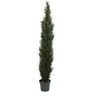 7' Mini Cedar Pine Tree