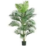 7' Paradise Palm Silk Tree