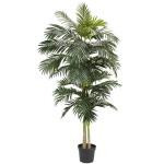 8'  Golden Cane Palm Silk Tree
