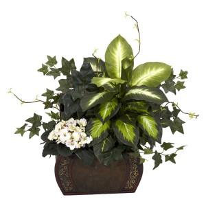 African Violet, Dieffenbachia & Ivy w/Chest Silk Plant