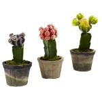 Colorful Cactus (Set of 3)