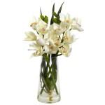 Cymbidium Orchid w/Vase