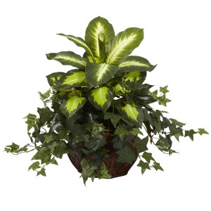 Dieffenbachia & Ivy w/Decorative Planter