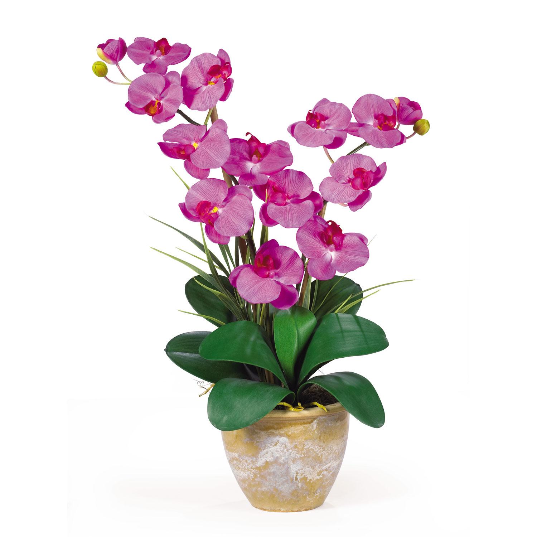 Double stem phalaenopsis silk flower arrangement silk specialties double stem phalaenopsis silk flower arrangement mightylinksfo