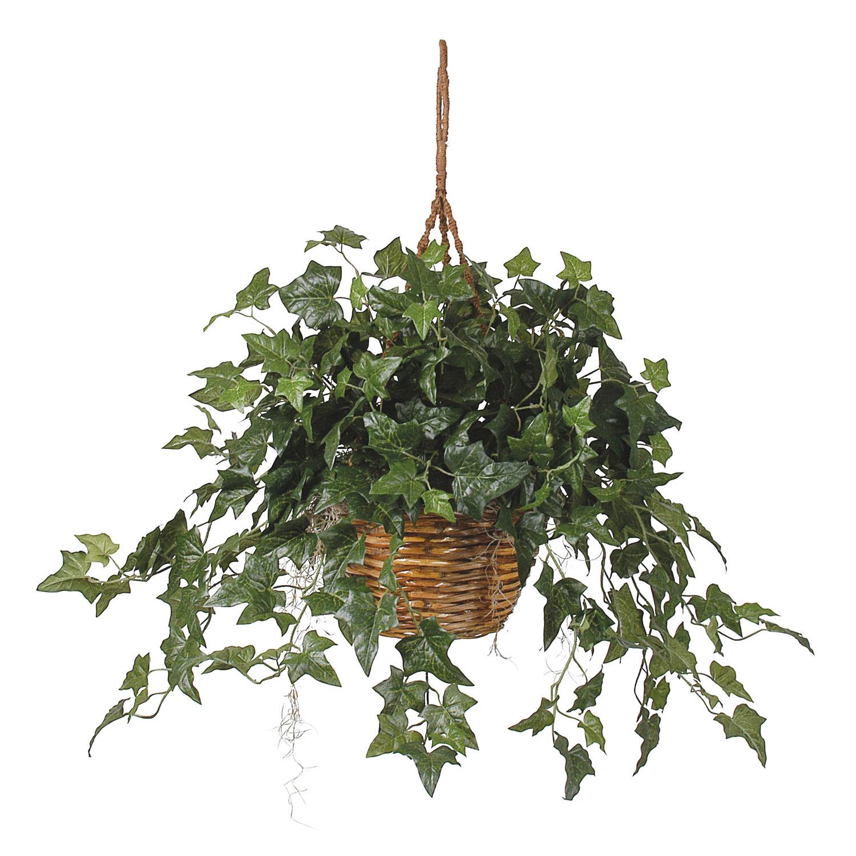 english ivy hanging basket silk plant - silk specialties