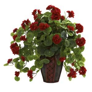 Geranium w/Decorative Planter