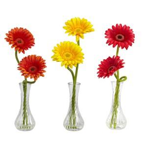 Gerber Daisy w/Bud Vase (Set of 3)
