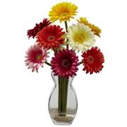 Gerber Daisy w/Vase